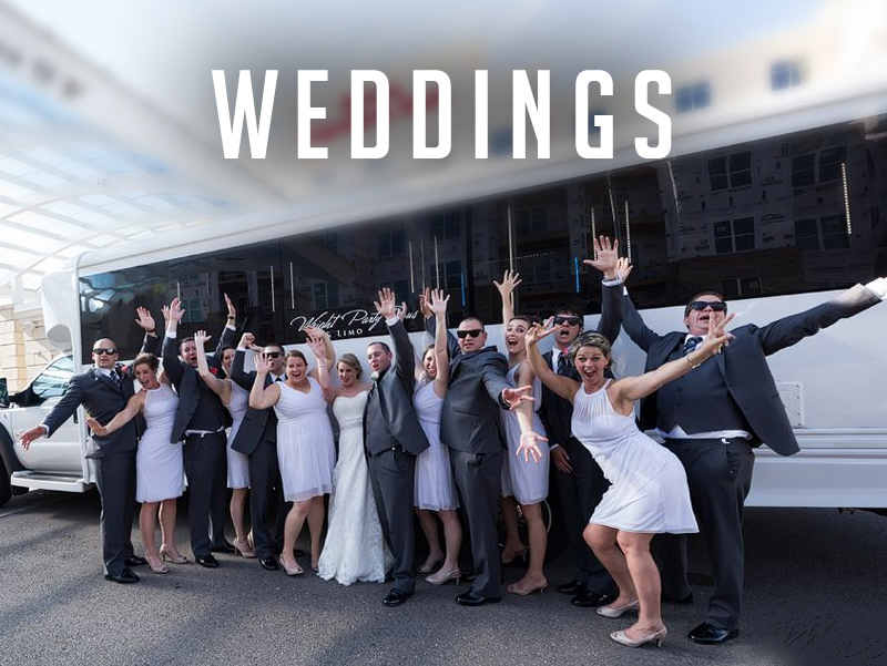 Wedding Party Bus